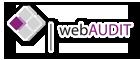 webaudit
